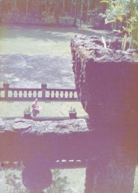 Paronella Park 1972