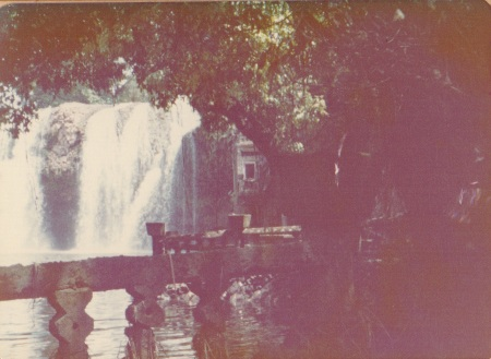 Waterfall,  Paronella Park.