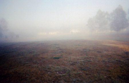Fog over equestrian track.